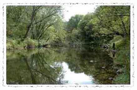 http://www.parrishill.com/sitebuildercontent/sitebuilderpictures/musconetcong_river_torn3.jpg